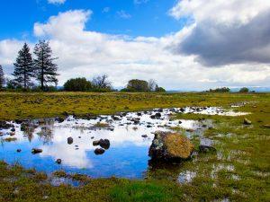nature landscape 53 300x225 - nature & landscape (53)
